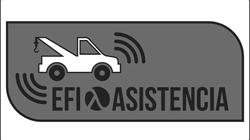 logo_efi
